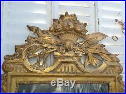 Ancien Miroir Style Louis XVI Bois Dore Sculpte Debut XX Siecle