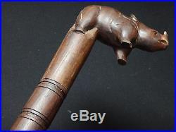 Ancienne canne bois sculpté rhinocéros Wooden carved cane 95cm