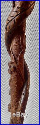 Ancienne canne de poilus en bois sculptée Serpent sur branche WW1 art populaire