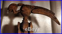Calao Senoufo Ancien 75 cm Art Premier Africain Statue Africaine Bois Sculpté