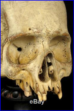 Étonnante vanité crâne ancien bois sculpté c. 1880 Cabinet Curiosité Memento Mori